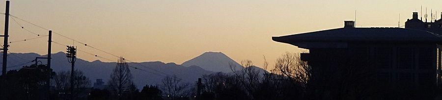 東京競馬場越しの富士山